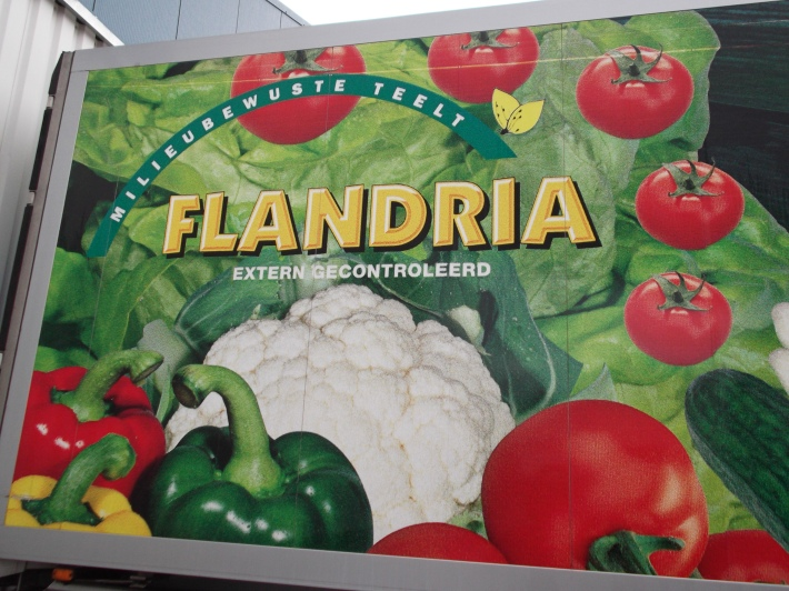 Los productores de frutas y hortalizas de Bretaña y Flandes se alían / Les producteurs de fruits et légumes de Bretagne et de Flandre s'allient