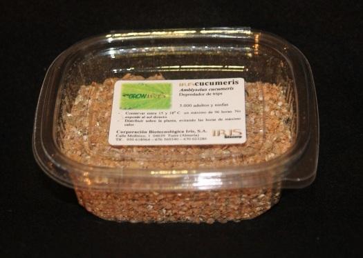 Iriscucumeris