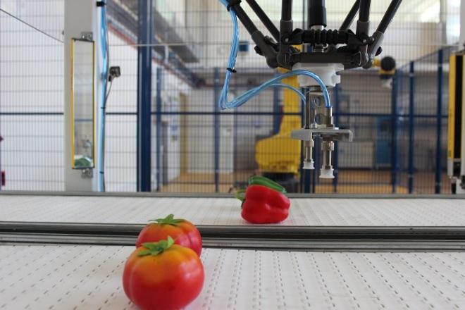 La agricultura del próximo milenio