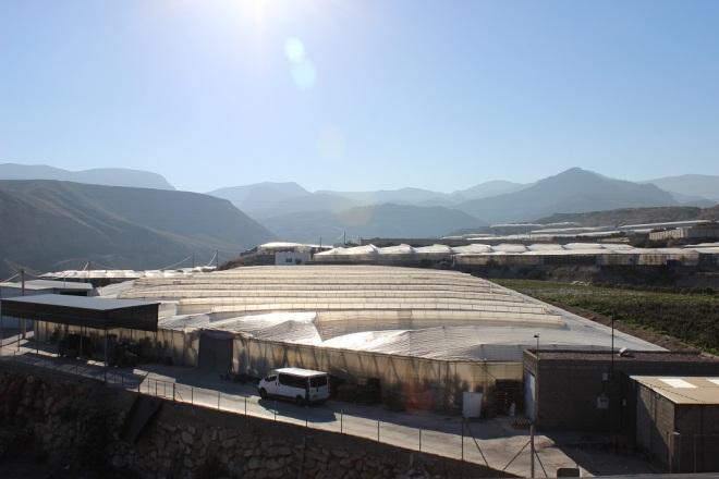 invernaderos Alhama