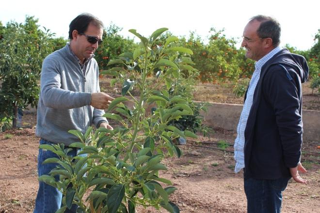 Julio Climent y Alfredo Iranzo