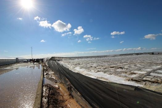 Camino y finca inundados