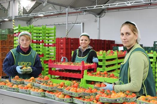 trabajadoras de la central ecológica de Única