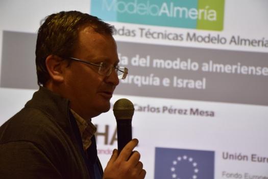 Pérez Mesa