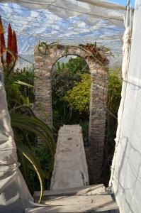 entrada invernadero
