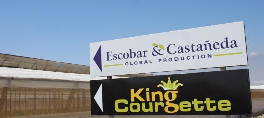 Escobar & Castañeda